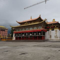 Saige Temple User Photo