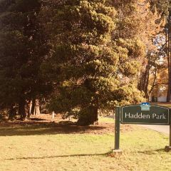 Hadden Park User Photo