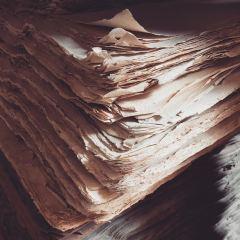 紙博物館用戶圖片
