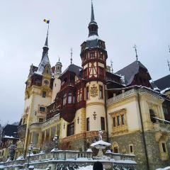 錫納亞修道院用戶圖片