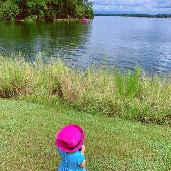 Dreher Island State Park User Photo