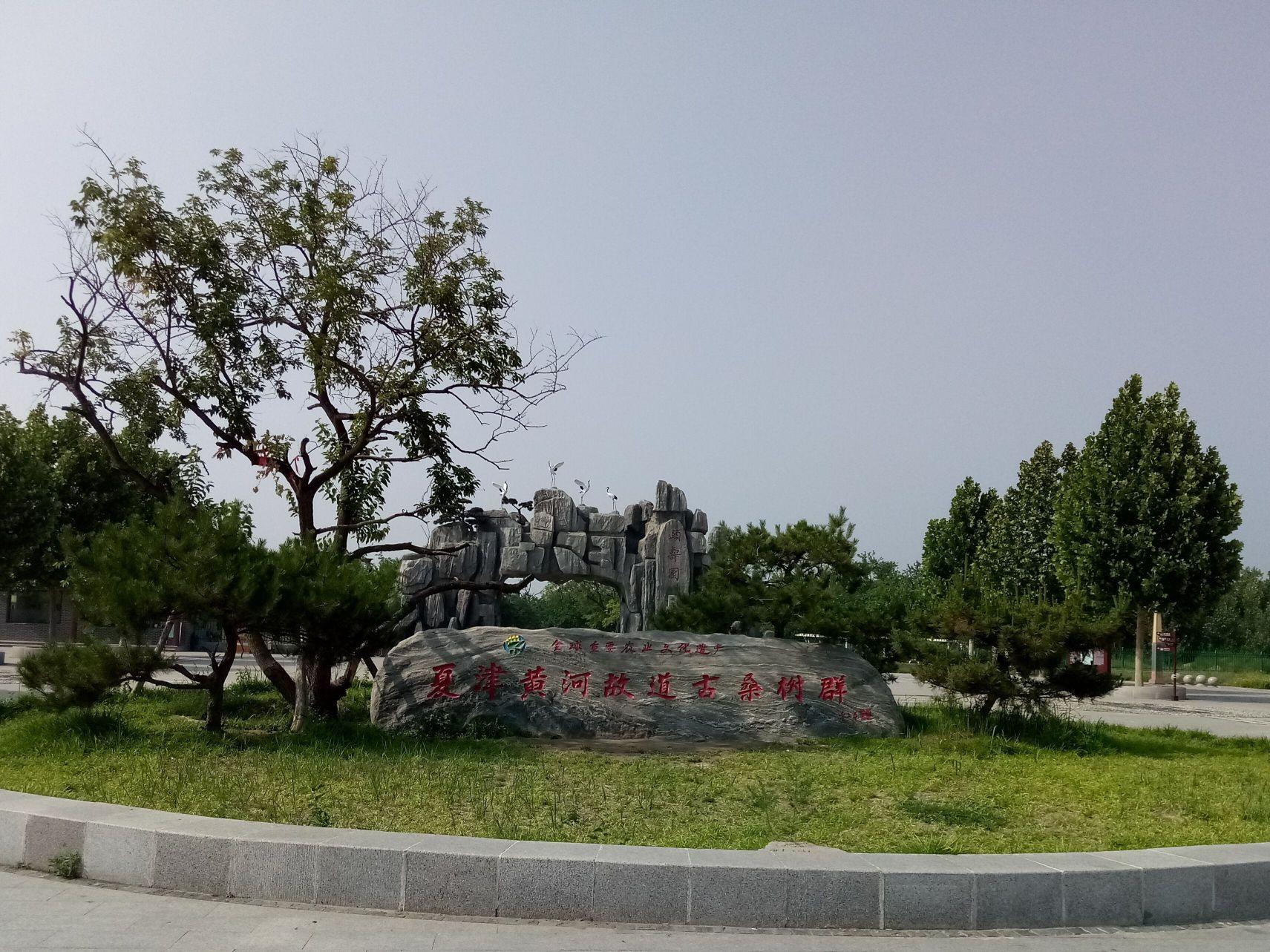 Xiajin Yellow River Forest Park