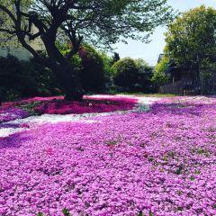 郭沫若記念館のユーザー投稿写真