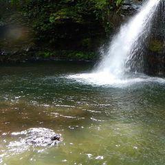 千ヶ滝のユーザー投稿写真