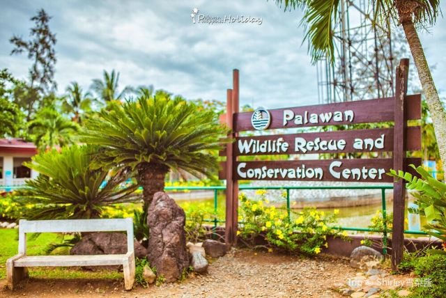 Palawan Wildlife Rescue and Consevation Center