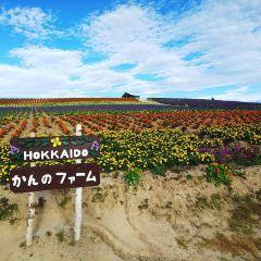 菅野牧場用戶圖片