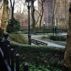 都德市綠地用戶圖片