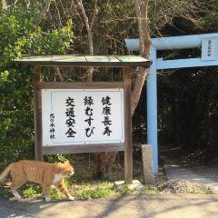 Koinomizu Shrine User Photo
