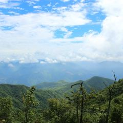 Xingmei Peak User Photo