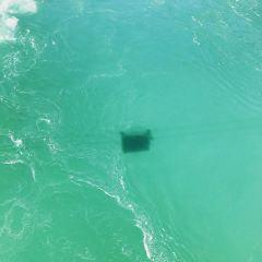 ワールプール エアロカーのユーザー投稿写真