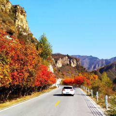 Liushi Road User Photo