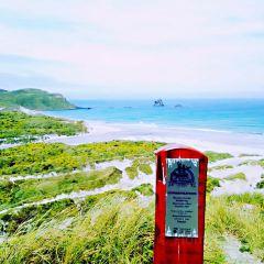 Sandfly Bay User Photo