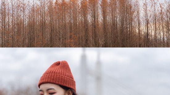 江濱公園(賓王路)