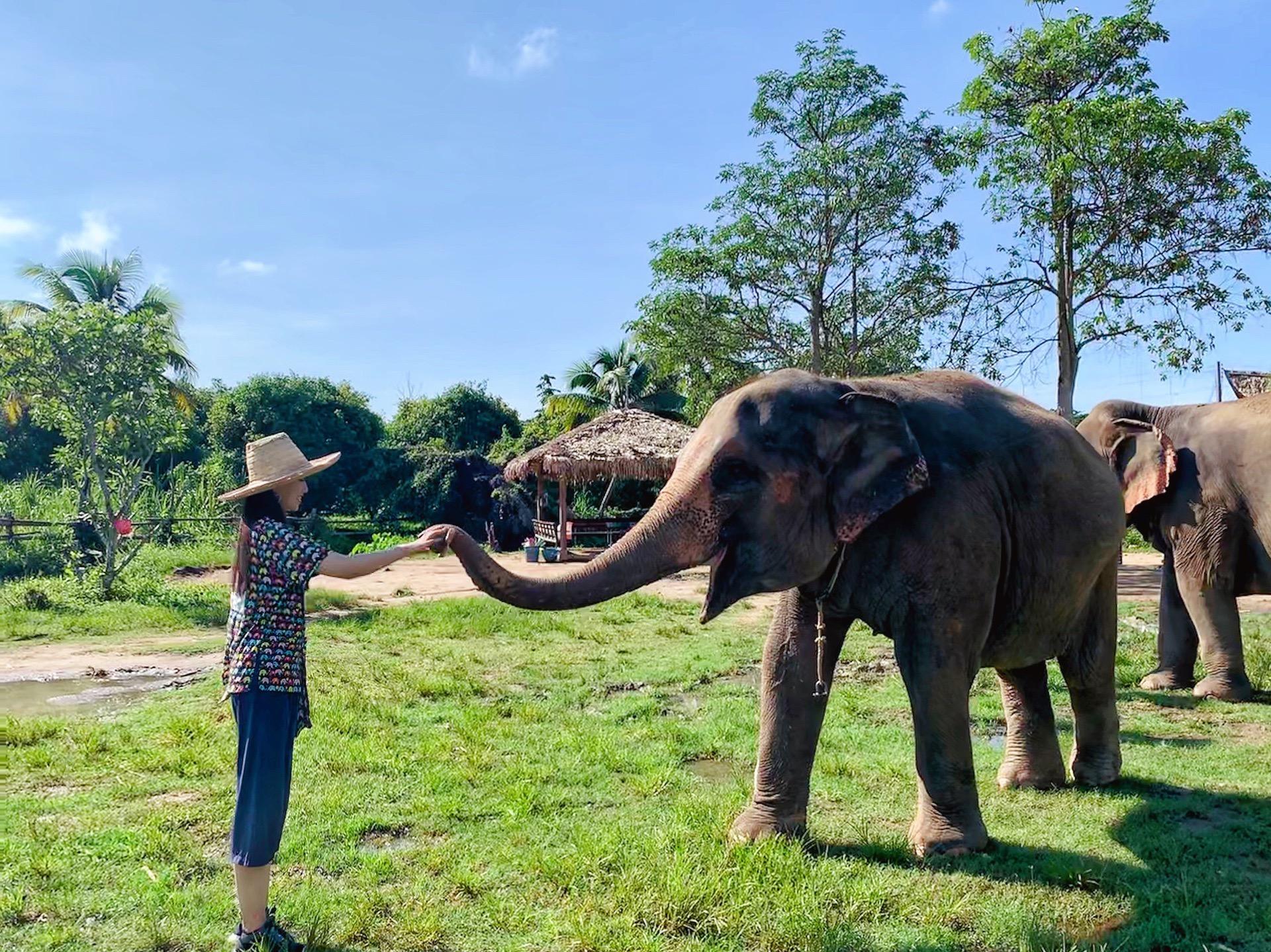 Kanta Elephant Sanctuary