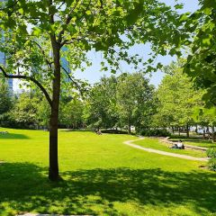 Harbour Green Park用戶圖片