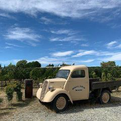 Rippon Vineyard User Photo