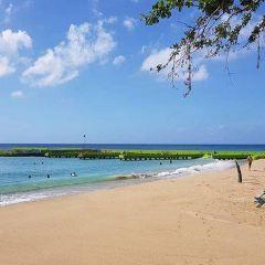 Crashboat Beach用戶圖片