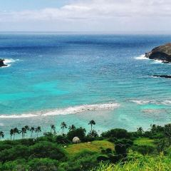 Hanauma Bay Trail用戶圖片