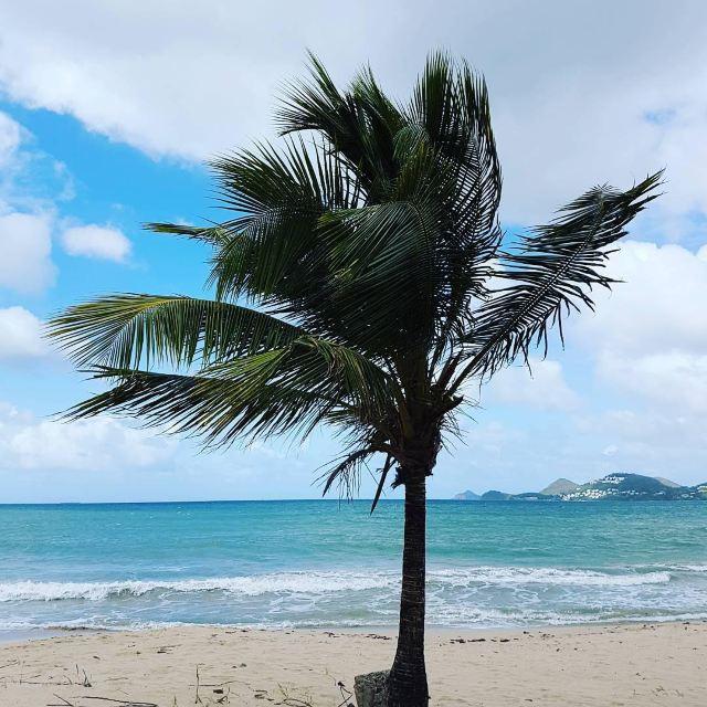 Vigie Beach