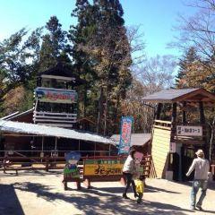 치비코 닌자마을 여행 사진