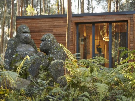 One Only Gorilla S Nest Reviews For 5 Star Hotels In Musanze Trip Com