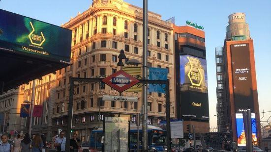 馬德里花朵旅館