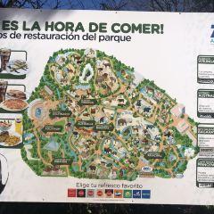 馬德里動物園用戶圖片