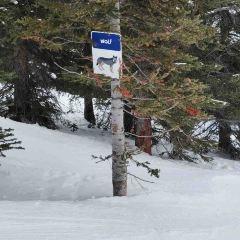 Banff Sunshine User Photo