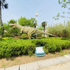 龍園旅遊區用戶圖片