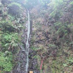 Niumulin Nature Reserve User Photo