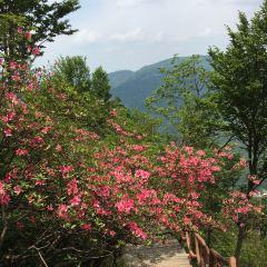 英山縣天馬寨風景區用戶圖片