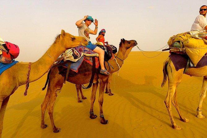 Private Excursion: Full Day Safari Route Jaisalmer - Camel-safari - Jaisalmer