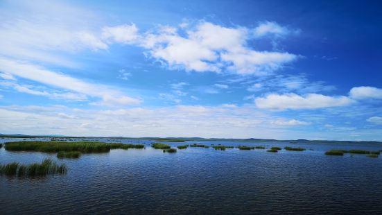 若爾蓋花湖