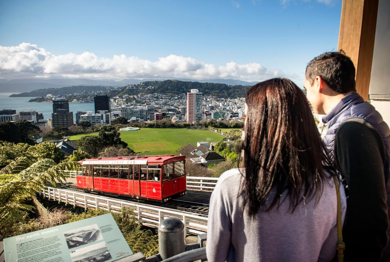 Wellington: 3-Hour City Sights and Coastline Tour