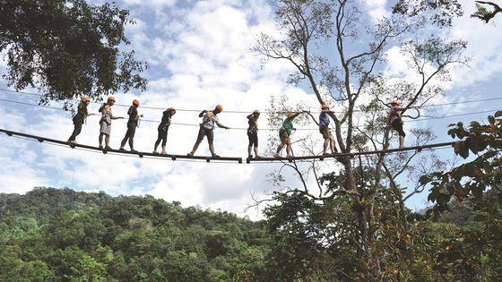 Chiang Mai Dragon Flight Zipline/Sky Hawk Zipline (High-altitude) (includes hotel transfer)