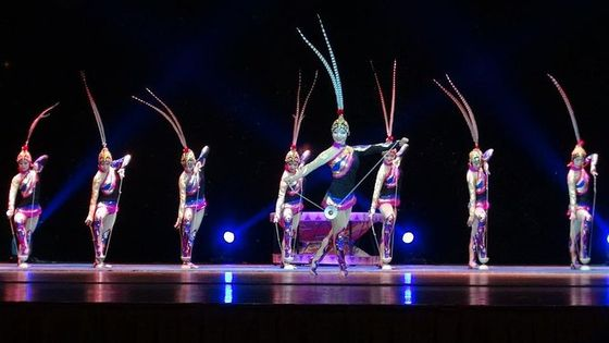Din Tai Fung Dinner Experience and Acrobatics Show in Shanghai