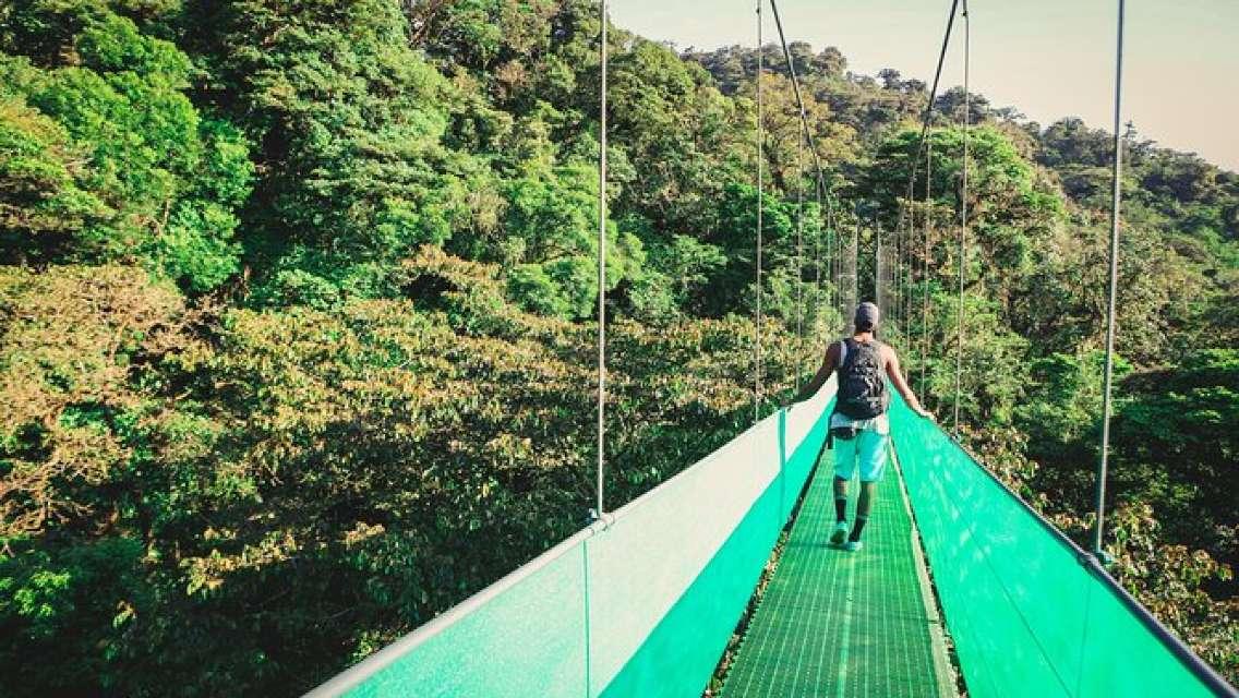Sky Walk From Monteverde