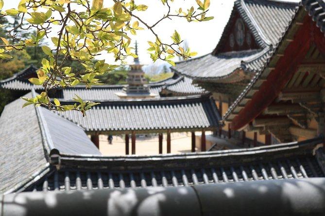 Private Gyeongju tour including Seokguram, Bulguksa and Tomb park from Busan