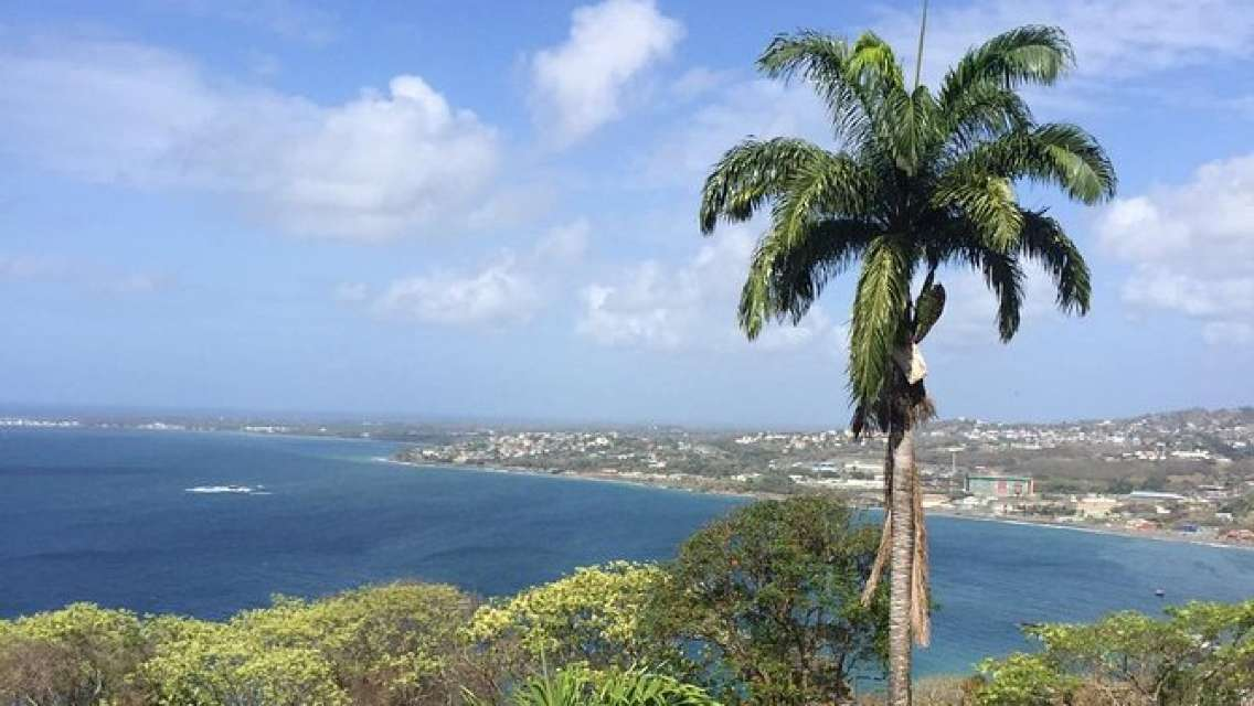 Full Island Tour (with Caribbean-Style Lunch)