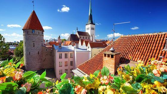 Old Tallinn with Kadriorg & Pirita