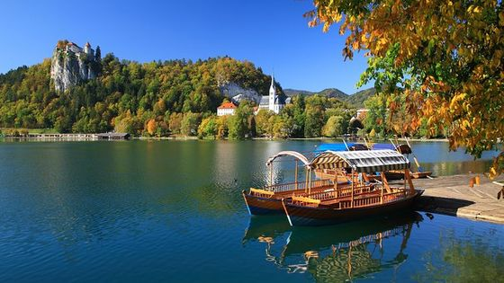 Lake Bled and Traditional Lunch in Radovljica from Ljubljana