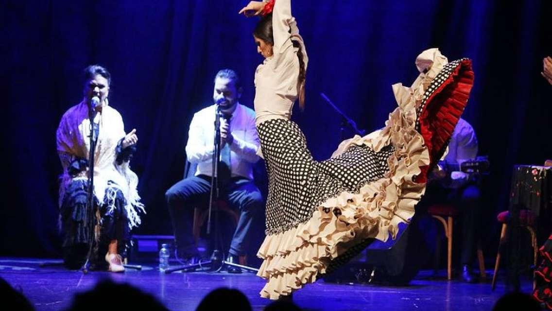 Flamenco Show Ticket at Theatre Barcelona City Hall