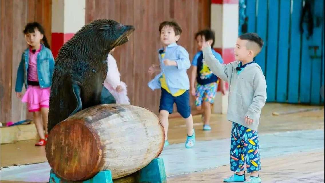 Sanya Parent-child Custom Tour [Fishing/Animal Shows/Beach]