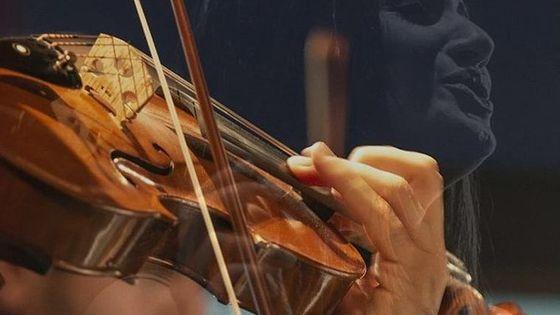 The Great Opera Arias Concert Ticket at Palazzo Santa Chiara