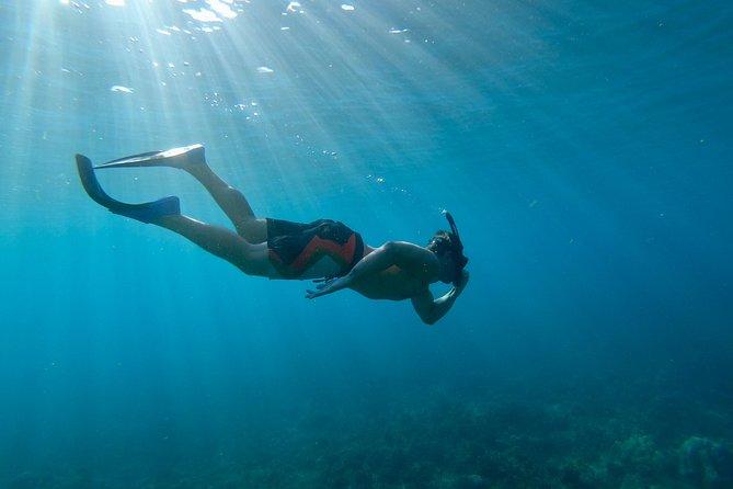 Lanai Snorkeling and Dolphin Encounter from Lahaina
