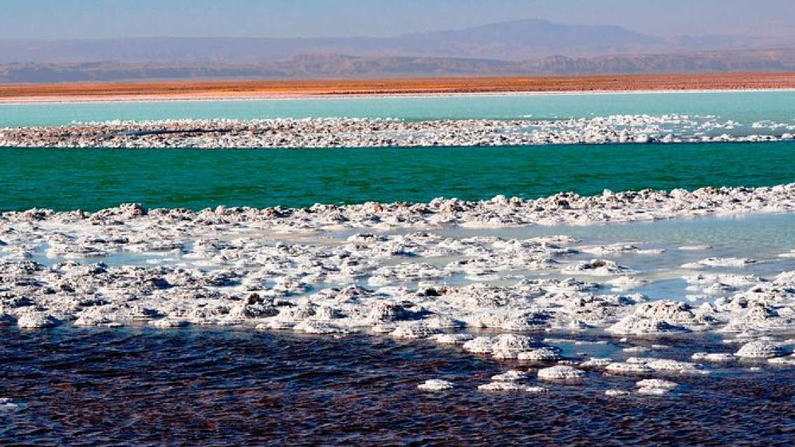 Atacama Salt Flat Lagoons Tour Including Ojos del Salar from San Pedro de Atacama