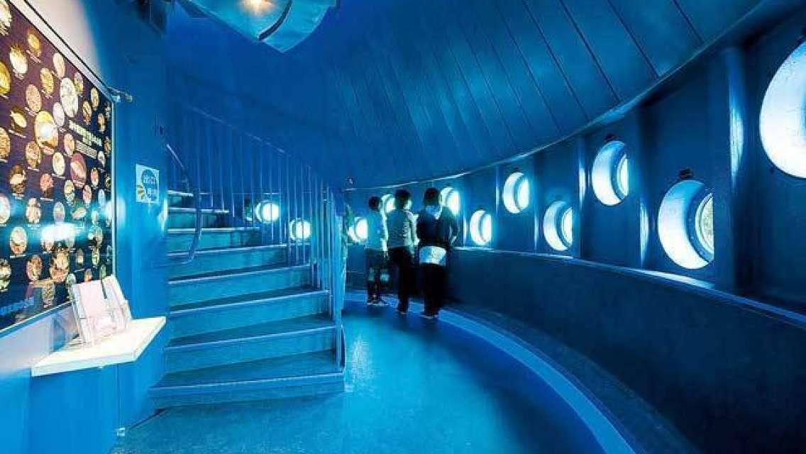 「期間限定セール」和歌山串本海中公園 水族館&海中展望台