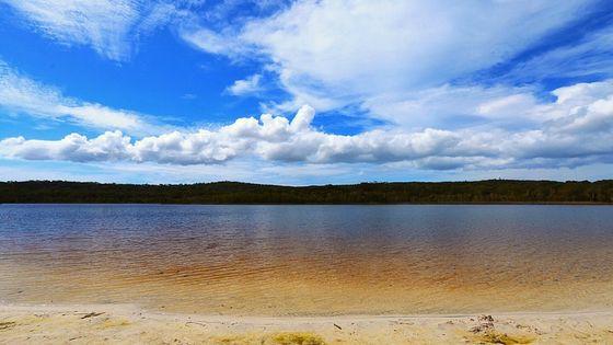 브리즈번 근교여행 스트라드브로크 아일랜드