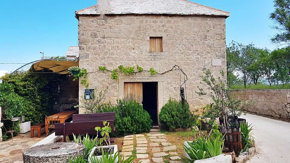 Island of Brac and Authentic Olive Oil Museum Driver Guide Tour from Split