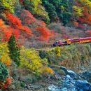 Torokko Arashiyama Train Ticket